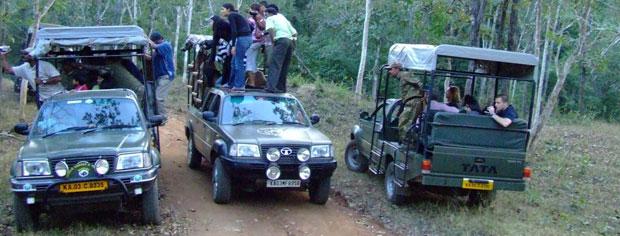 jeep-safari-tour